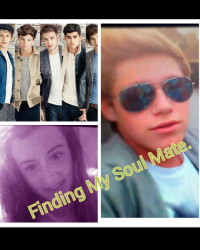 Finding My Soul Mate. A 1DFanfic.