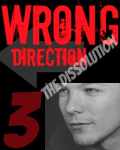 Wrong Direction Part 3 ~complete~
