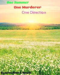One Summer,One Murderer,One Direction