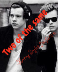 Two of the same - Harry Styles
