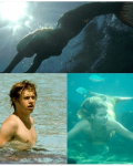 I sea love -Niall Horan fanfic-