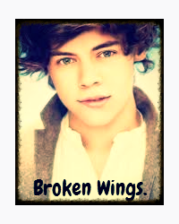 Broken Wings.