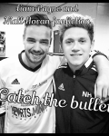 Catch the bullet (Liam Payne, Niall horan fan fiction
