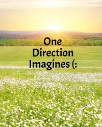 One Direction Imagines :)