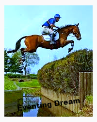 Eventing Dream