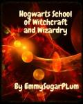 Hogwarts School of Witchcraft and Wizardry Year 1