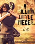 A Billion Little Pieces