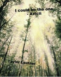 I Could Be The One - Avicii (Taylor Lautner Fan Fiction)
