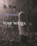 If You Spread Your Wings.