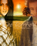 The Cornfield {Harry Styles}