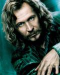 Sirius Black and the deathly hallows