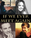 If We Ever Meet Again - Liam Payne