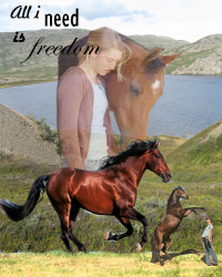 //All i need is freedom