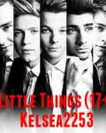 Little Things (17+)