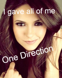 I gave all of me-One direction