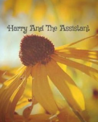 Harry and the Assistant