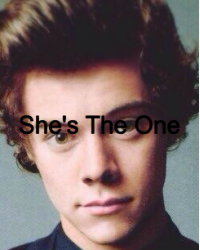 She's The One (A Harry Styles love story)