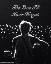 The Love I'll Never Forget (Niall Horan Love Story )
