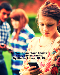 Do You Know Your Enemy? (Harry Styles Fanfic)