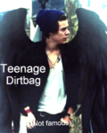 Teenage Dirtbag (not famous)