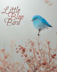 Little Blue Bird