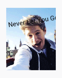 Never Let You Go *A Niall Horan Fanfic*