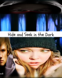 Hide and Seek in the Dark (OneShot)