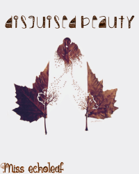 Disguised Beauty (A One Direction FanFiction)