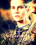 Forbidden Love (Teen Wolf Stiles)