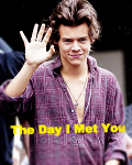 The Day I Met You (one direction fanfic)