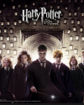 Harry potter character profiles