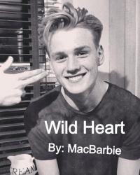 Wild heart (the vamps fanfic)