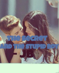 The secret, and the stupid boy - JB