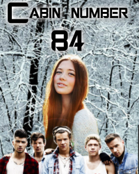 Cabin number 84 | One Direction 15+