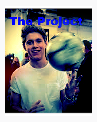 The Project (One Direction Fan Fic)