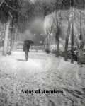 A day of wonders