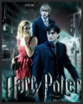 What happened after Harry Potter and the Deathly Hallows