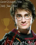 Harry Potter: A Twin at Stake