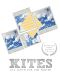 Kites Fly South for the Winter