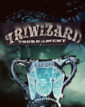 The Triwizard Tournament (Simulation-Story)