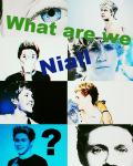 What are we Niall? // NH
