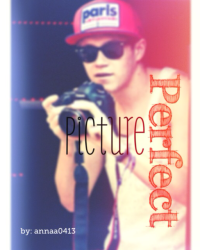 Picture Perfect (Niall Horan Fanfic)