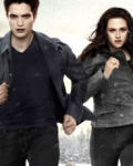 Hunger Games (Twilight)