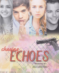 Chasing Echoes ✺ One Direction (Pause)