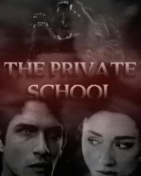 The Private School Book 1 Of 3 (Werewolf Love Story)