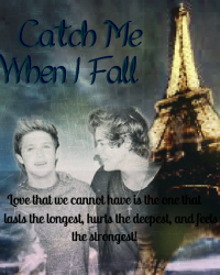 Catch Me When I Fall *Narry Storan* COMPLETE
