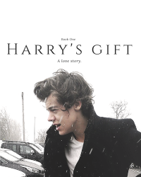 Harry's Gift (Punk Harry) Book I