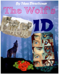 The Wolf's - One Direction *(PAUSE)*