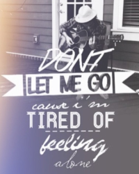 Don't Let Me Go ( Harry Styles)