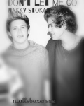 Don't Let Me Go [Narry Storan]